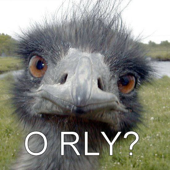 0011orly-ostrich1