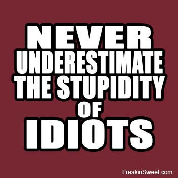 A06stupid_idiots_banner